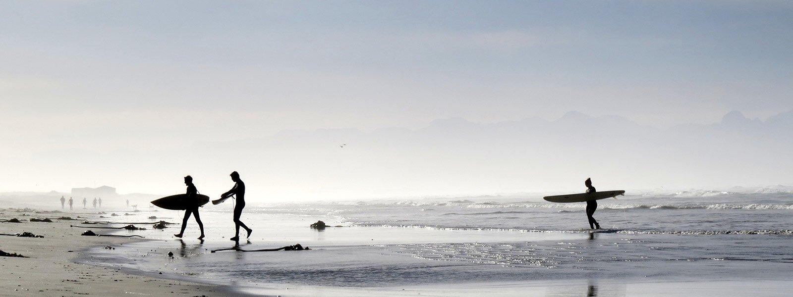 Alex Walker finds his Serengeti in the ocean