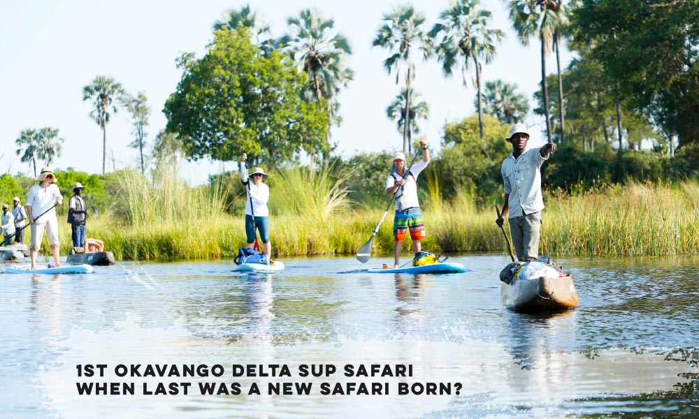 1st Okavango Delta SUP Safari